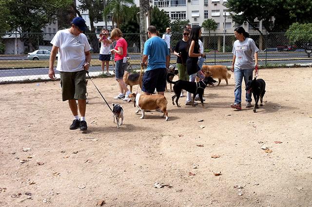 Encontro de Socialização na Lagoa Rio de Janeiro
