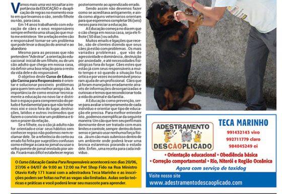Educaçao Canina Para Responsáveis